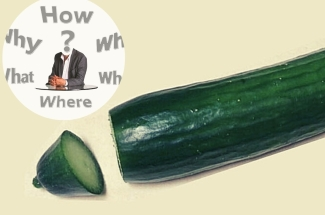 Зачем весь мир доит огурцы? Я тоже попробовала — вкус овоща не узнать!