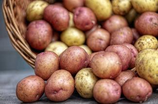 Готовим из картошки: 3 экономных блюда с минимальным набором продуктов