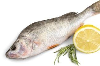 Знакомый рыбак поделился опытом, рассказав какую рыбу и как лучше готовить