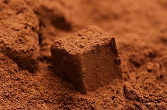 Научилась готовить потрясные конфеты из какао и сгущенки. Объедаемся всей семьёй четвертые сутки