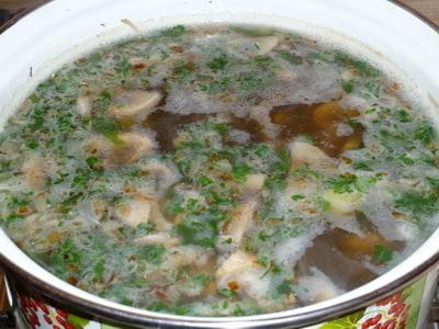 рецепт вкусного грибного супа из шампиньонов со сливками