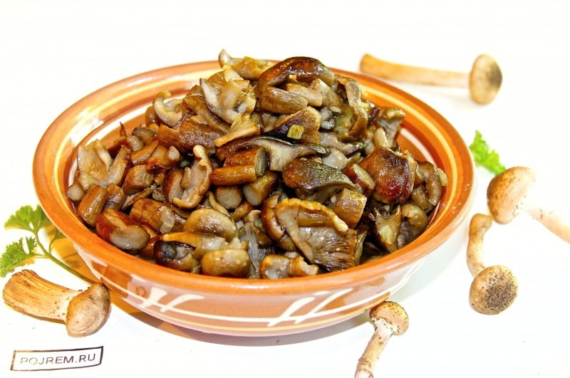 жареные опята с картошкой фото рецепт